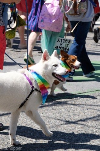 Pride 2017 Seattle (29 of 52)