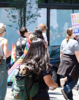 Pride 2017 Seattle (30 of 52)