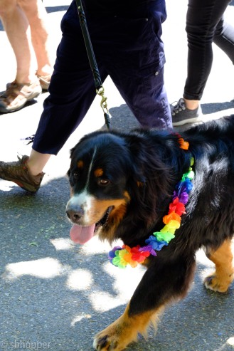 Pride 2017 Seattle (47 of 52)